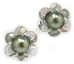 Tahitian Pearl Earrings