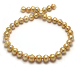 Dark Gold South Sea Pearl Necklace