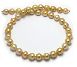 Golden South Sea Keshi Pearl Necklace