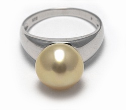 Open Shank Golden South Sea Pearl Ring