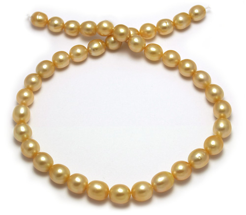 Intense deep golden South Sea pearl necklace