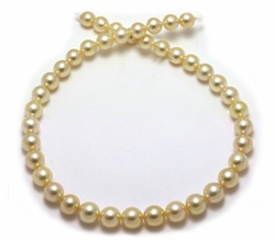 Light Golden Pearl Necklace
