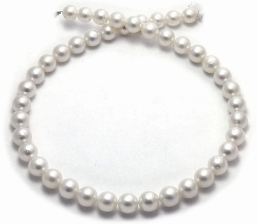 Bargain South Sea Pearl necklace