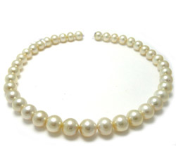 Cream South Sea Pearl Necklace